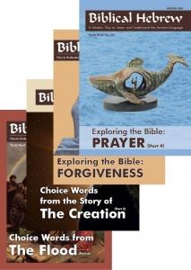 Biblical Hebrew- Sample cover